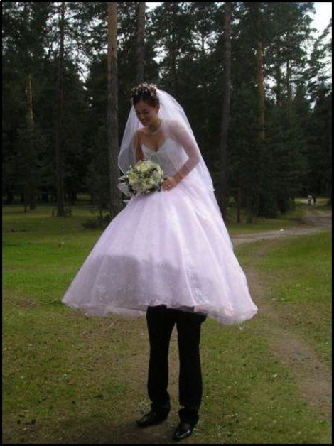 Funny Wallpaper Free Picturesf: Funny Wedding Photos